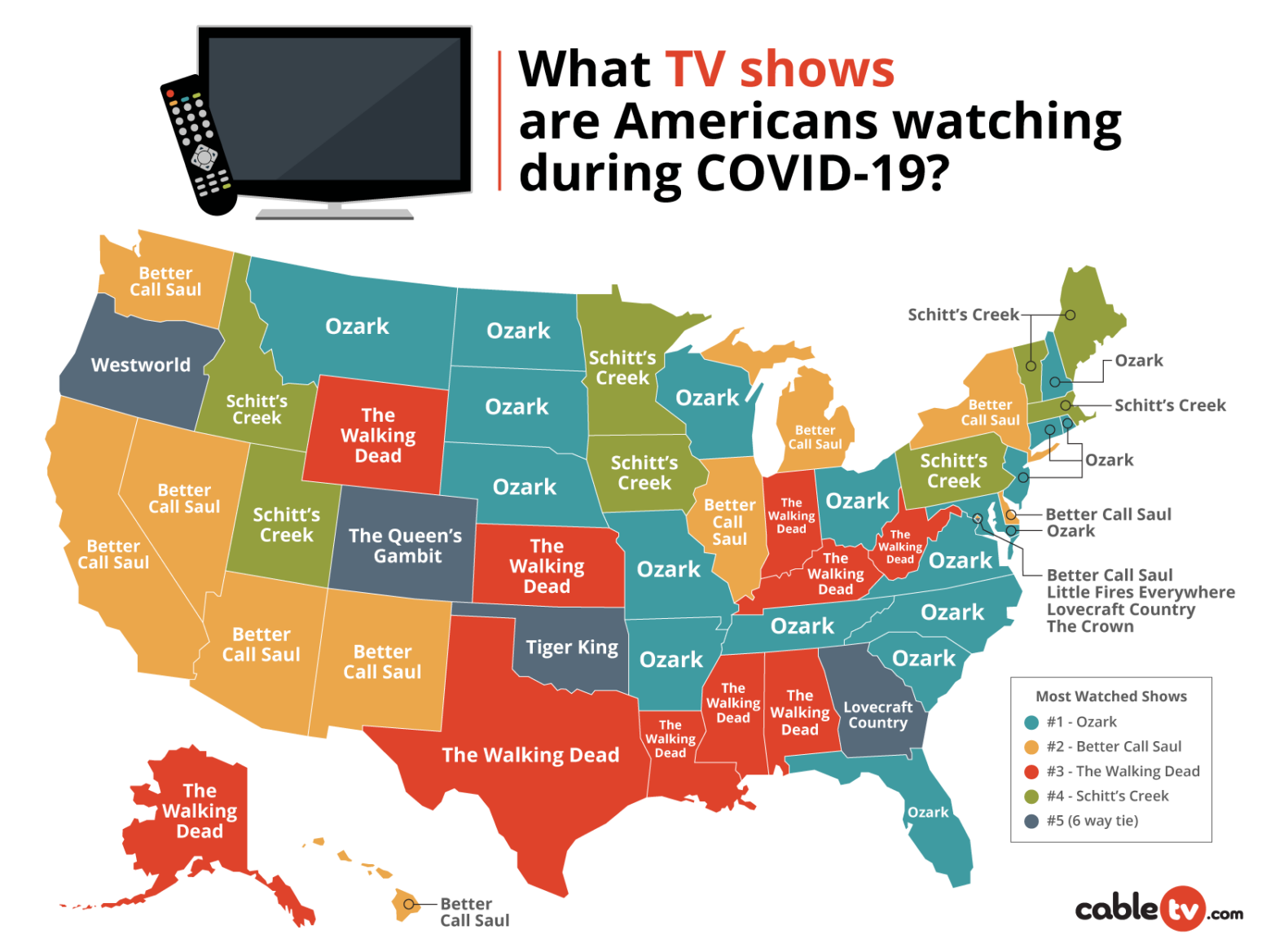 What the US is Watching During COVID